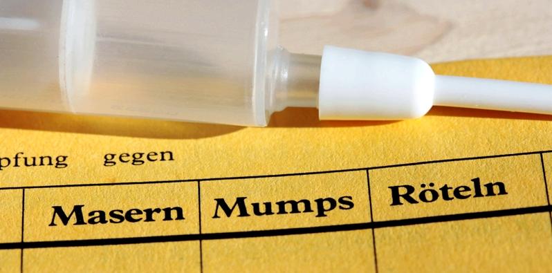 Impfausweis mit Spritze