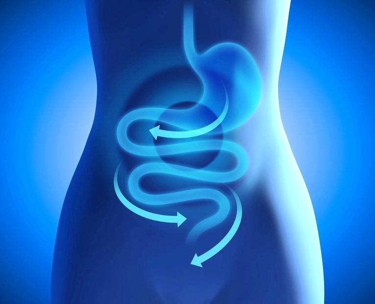 Der Wirkstoff Loperamid verlangsamt die Darmbewegung. Dadurch kann der Verdauungsbrei eindicken und der Durchfall stoppt