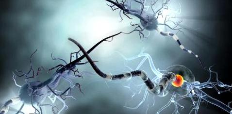 Beschädigte Neuronen