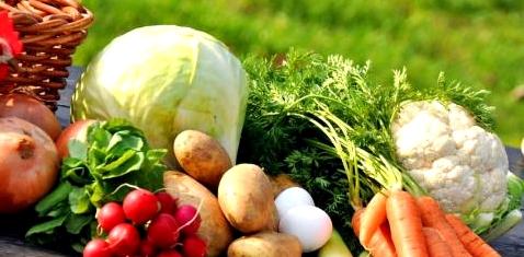 Gemüse aus dem Garten mit Blei belastet