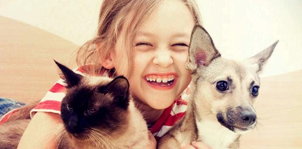 Allergierisiko von Haustieren auf Kinder ungeklärt
