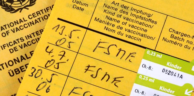 Den besten Schutz vor einer Infektion mit der Frühsommer-Meningoenzephalitis bietet die FSME-Impfung