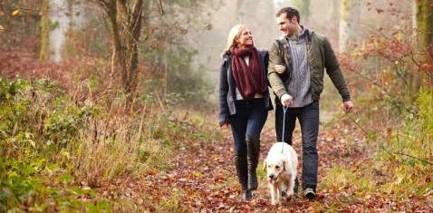 Ein Paar geht mit einem Hund spazieren