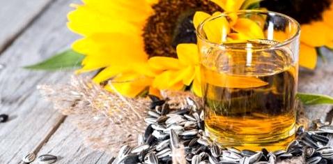 Öl gegen Magenkrebs