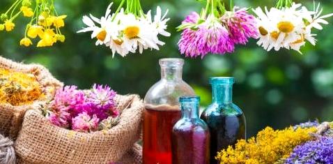 Homöopathische Pflanzen und Samen