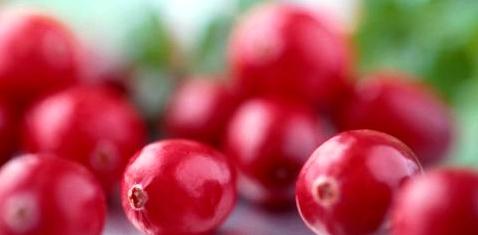 Cranberries gegen Harnwegsinfekt