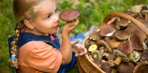 Mädchen mit gesammelten Pilzen